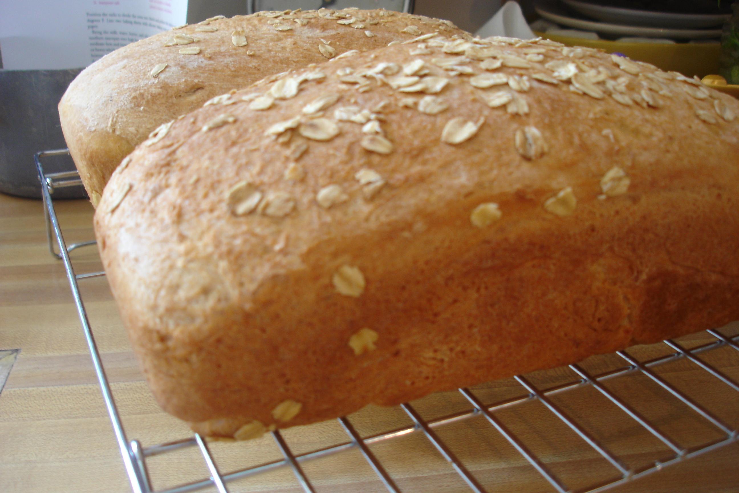 BOM) Maple Oatmeal Bread | Tea and Scones